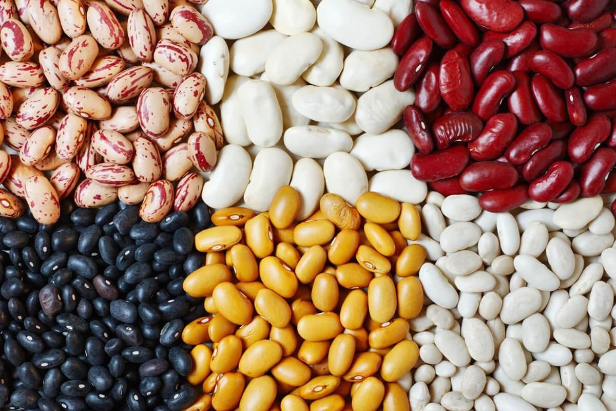 Popadic komerc proizvodi pasulj (1)