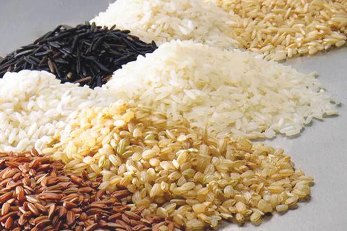 Popadic komerc proizvodi pirinac (1)